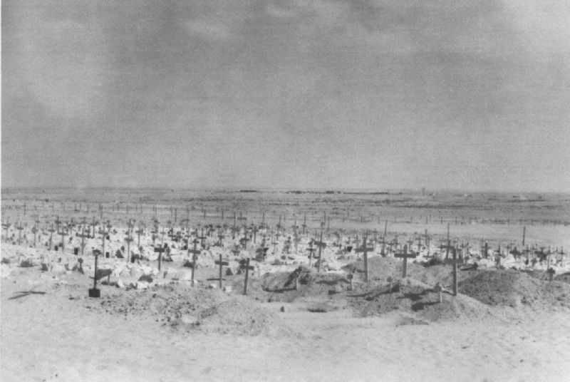 The cost of battle: at least 23,000 British & German troops were killed or wounded at El Alamein.  Italian deaths are unknown but considerable